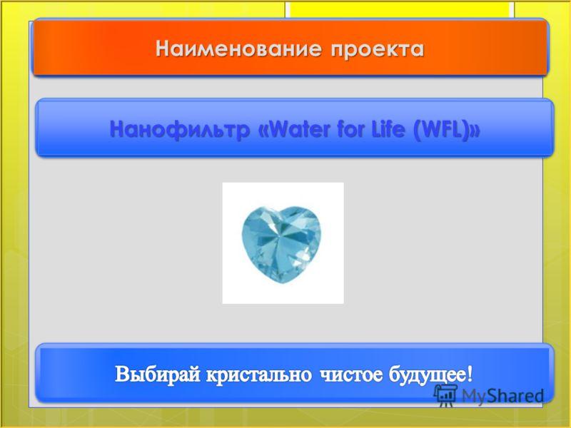 Нанофильтр «Water for Life (WFL)» Наименование проекта