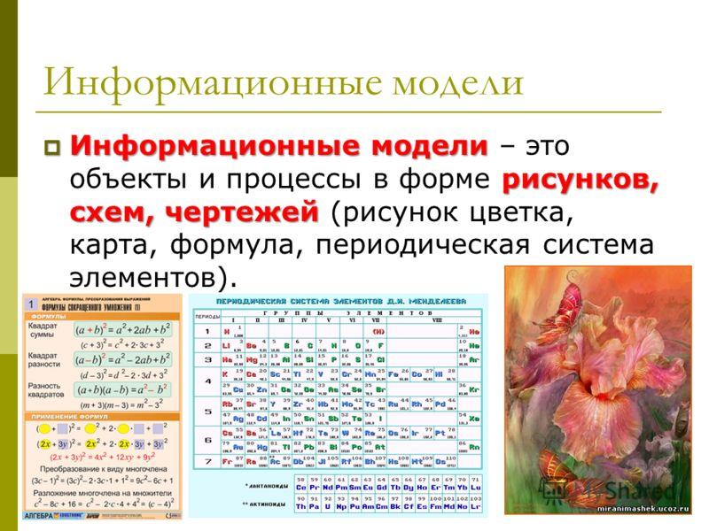 Информационные модели Информационные модели рисунков, схем, чертежей Информационные модели – это объекты и процессы в форме рисунков, схем, чертежей (рисунок цветка, карта, формула, периодическая система элементов).