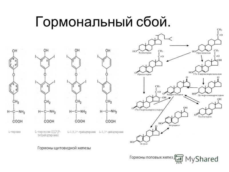 Гормональный сбой. Гормоны щитовидной железы Гормоны половых желез