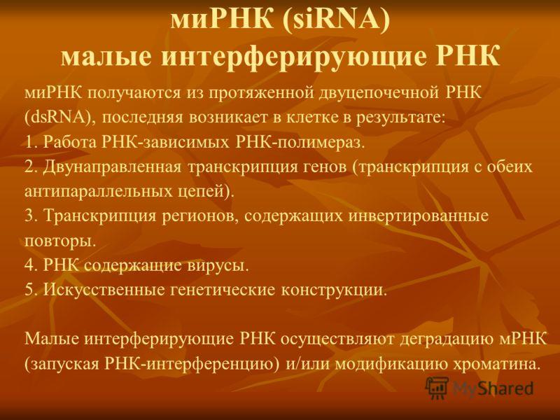 миРНК (siRNA) малые интерферирующие РНК миРНК получаются из протяженной двуцепочечной РНК (dsRNA), последняя возникает в клетке в результате: 1. Работа РНК-зависимых РНК-полимераз. 2. Двунаправленная транскрипция генов (транскрипция с обеих антипарал