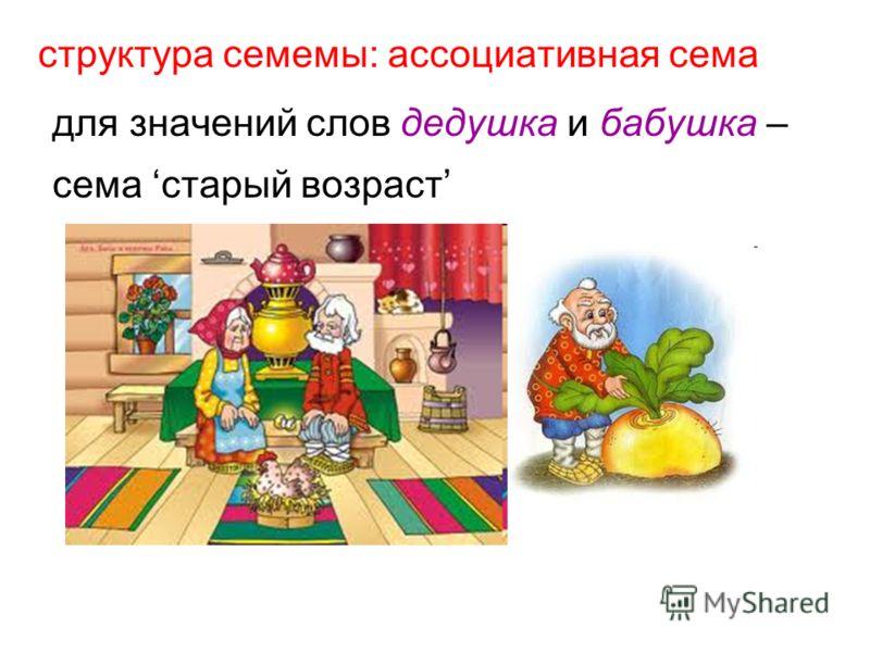 структура семемы: ассоциативная сема для значений слов дедушка и бабушка – сема старый возраст