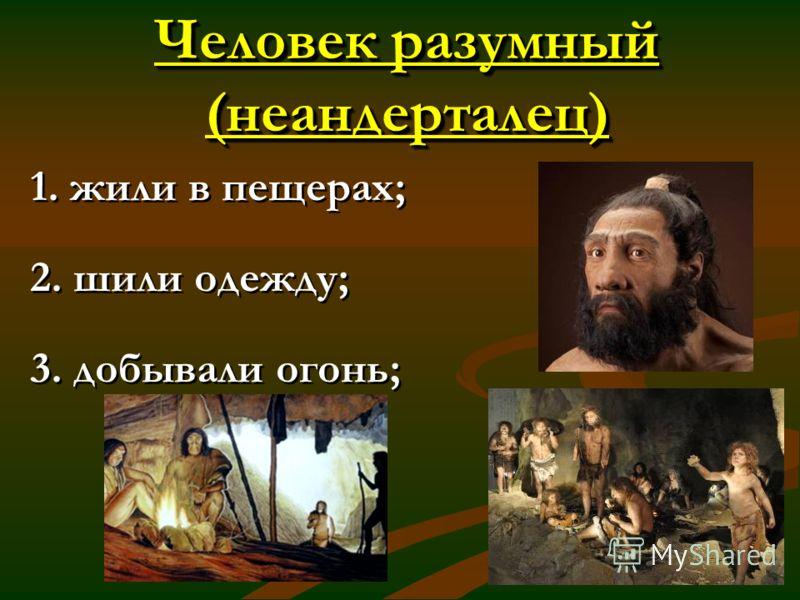Человек разумный (неандерталец) 1. жили в пещерах; 2. шили одежду; 3. добывали огонь; 1. жили в пещерах; 2. шили одежду; 3. добывали огонь;
