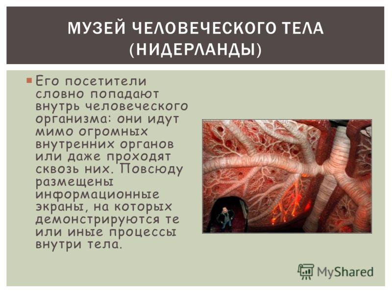 Его посетители словно попадают внутрь человеческого организма: они идут мимо огромных внутренних органов или даже проходят сквозь них. Повсюду размещены информационные экраны, на которых демонстрируются те или иные процессы внутри тела. МУЗЕЙ ЧЕЛОВЕЧ