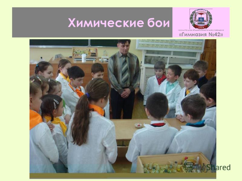 Химические бои муниципальное общеобразовательное учреждение «Гимназия 42»