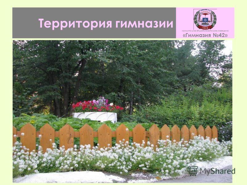 Территория гимназии муниципальное общеобразовательное учреждение «Гимназия 42»