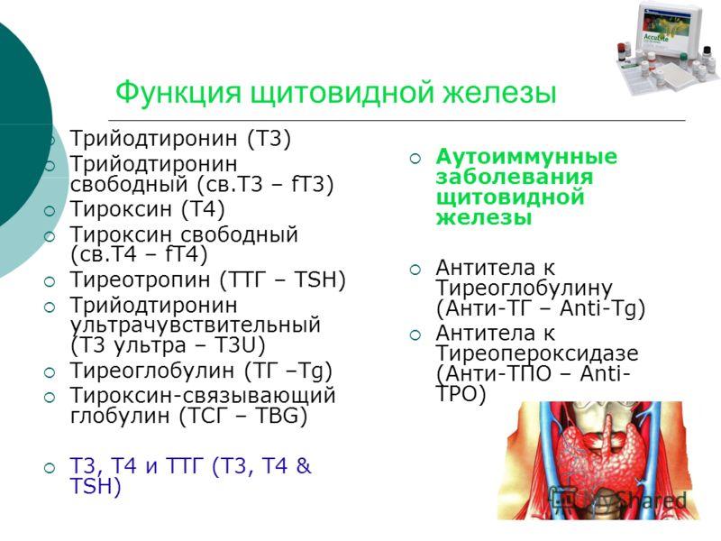 Функция щитовидной железы Трийодтиронин (T3) Трийодтиронин свободный (св.T3 – fT3) Тироксин (T4) Тироксин свободный (св.T4 – fT4) Тиреотропин (ТТГ – TSH) Трийодтиронин ультрачувствительный (Т3 ультра – T3U) Тиреоглобулин (ТГ –Tg) Тироксин-связывающий