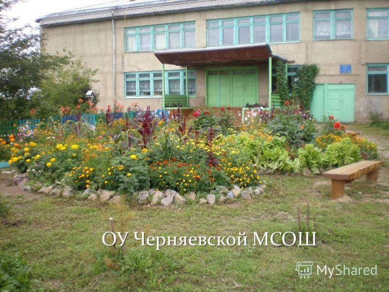 ОУ Черняевской МСОШ