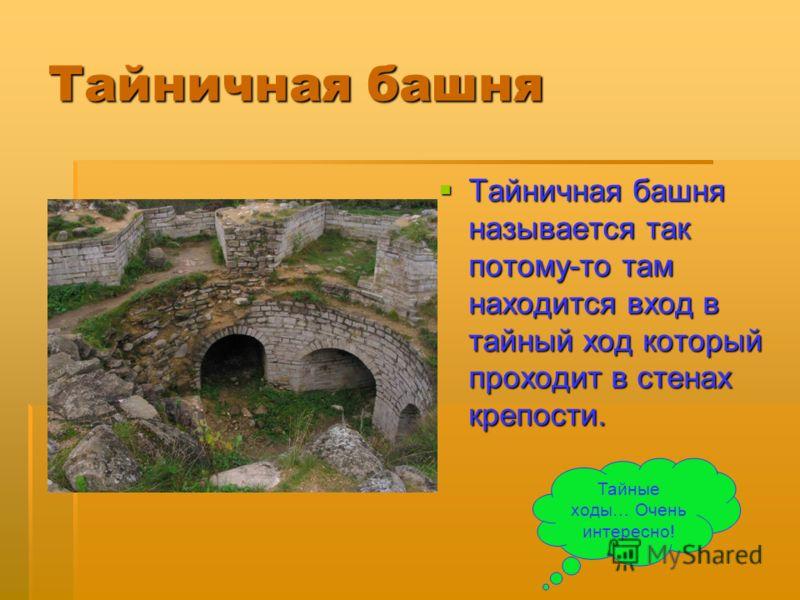 Тайничная башня Тайничная башня называется так потому-то там находится вход в тайный ход который проходит в стенах крепости. Тайные ходы… Очень интересно!