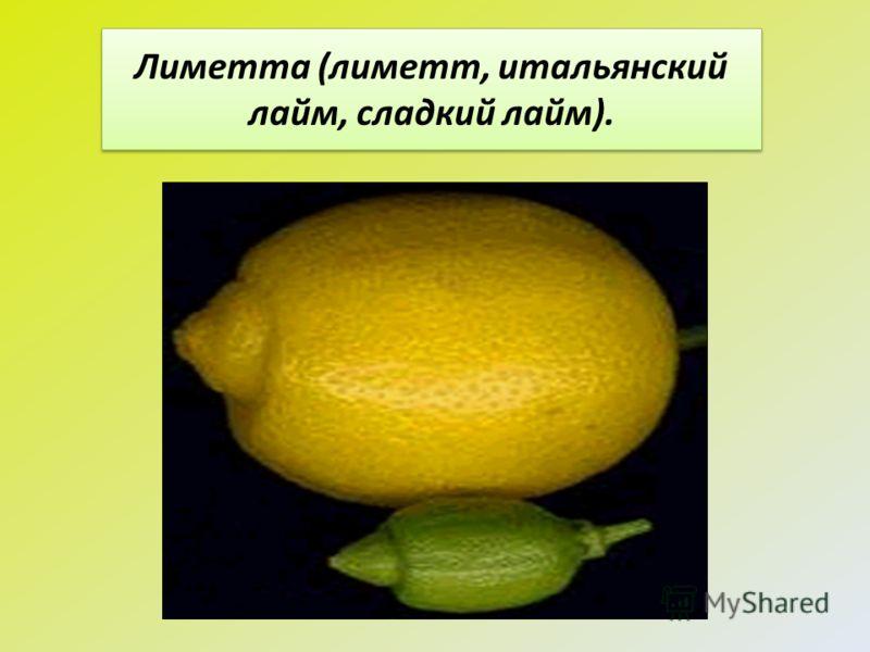 Лиметта (лиметт, итальянский лайм, сладкий лайм).