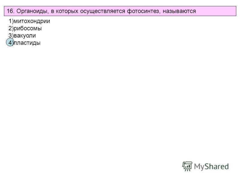 16. Органоиды, в которых осуществляется фотосинтез, называются 1)митохондрии 2)рибосомы 3)вакуоли 4)пластиды