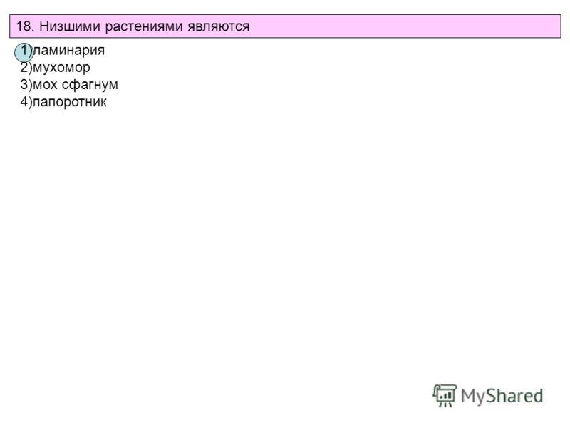 18. Низшими растениями являются 1)ламинария 2)мухомор 3)мох сфагнум 4)папоротник