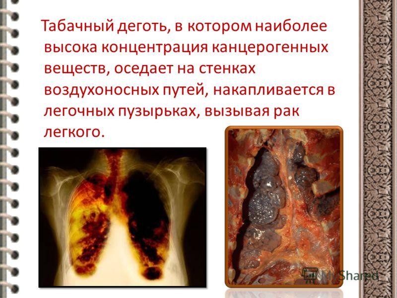 Табачный деготь, в котором наиболее высока концентрация канцерогенных веществ, оседает на стенках воздухоносных путей, накапливается в легочных пузырьках, вызывая рак легкого.
