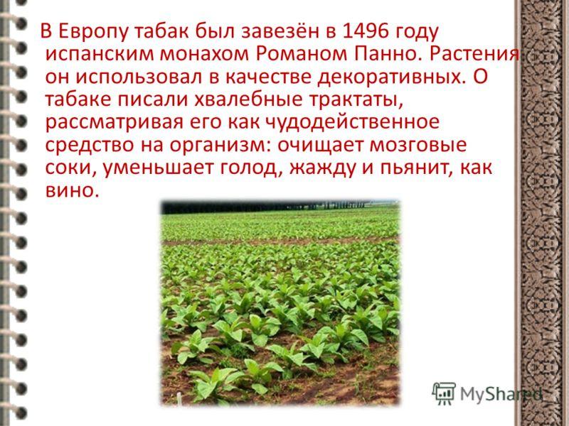 В Европу табак был завезён в 1496 году испанским монахом Романом Панно. Растения он использовал в качестве декоративных. О табаке писали хвалебные трактаты, рассматривая его как чудодейственное средство на организм: очищает мозговые соки, уменьшает г
