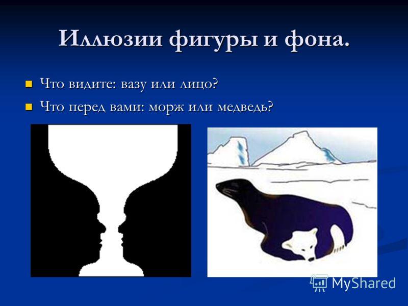 Иллюзии фигуры и фона. Что видите: вазу или лицо? Что видите: вазу или лицо? Что перед вами: морж или медведь? Что перед вами: морж или медведь?