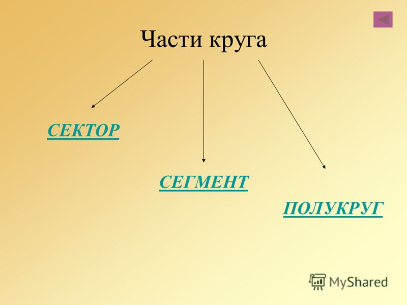 Части круга СЕКТОР СЕГМЕНТ ПОЛУКРУГ