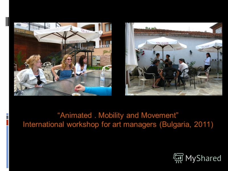 Animated. Mobility and Movement International workshop for art managers (Bulgaria, 2011)