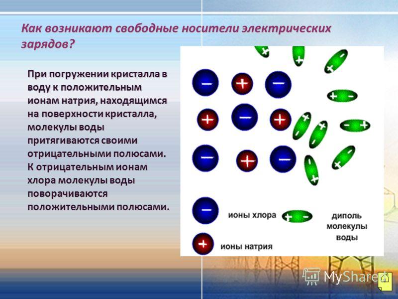 Как возникают свободные носители электрических зарядов? При погружении кристалла в воду к положительным ионам натрия, находящимся на поверхности кристалла, молекулы воды притягиваются своими отрицательными полюсами. К отрицательным ионам хлора молеку
