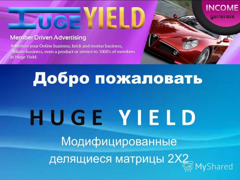 Welcome to HugeYield! Добро пожаловать H U G E Y I E L D Модифицированные делящиеся матрицы 2X2