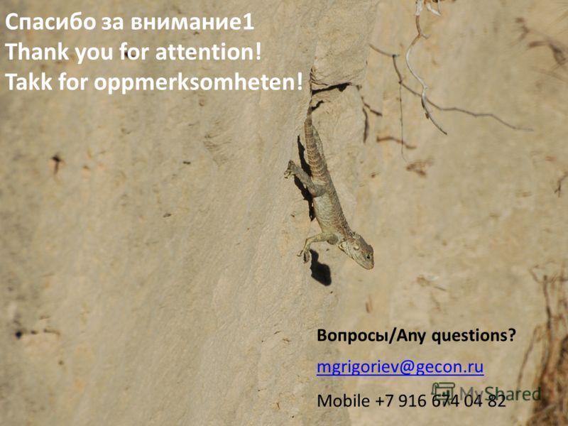 Спасибо за внимание1 Thank you for attention! Takk for oppmerksomheten! mgrigoriev@gecon.ru Mobile +7 916 674 04 82 Вопросы/Any questions?