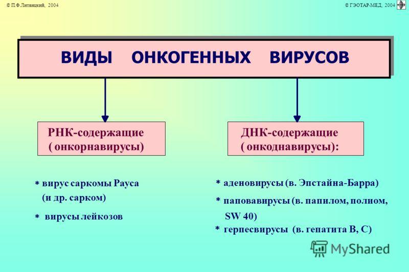аденовирусы (в. Эпстайна-Барра) паповавирусы (в. папилом, полиом, SW 40) герпесвирусы (в. гепатита В, С) ВИДЫ ОНКОГЕННЫХ ВИРУСОВ ДНК-содержащие (онкоднавирусы): РНК-содержащие (онкорнавирусы) вирус саркомы Рауса (и др. сарком) вирусы лейкозов © П.Ф.Л