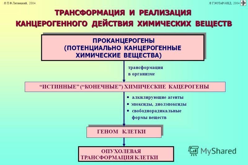 ТРАНСФОРМАЦИЯ И РЕАЛИЗАЦИЯ КАНЦЕРОГЕННОГО ДЕЙСТВИЯ ХИМИЧЕСКИХ ВЕЩЕСТВ трансформация в организме алкилирующие агенты эпоксиды, диолэпоксиды ПРОКАНЦЕРОГЕНЫ (ПОТЕНЦИАЛЬНО КАНЦЕРОГЕННЫЕ ХИМИЧЕСКИЕ ВЕЩЕСТВА) ГЕНОМ КЛЕТКИ ИСТИННЫЕ (КОНЕЧНЫЕ) ХИМИЧЕСКИЕ КАЦ