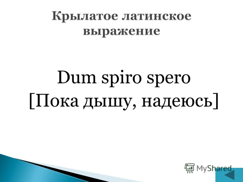 Dum spiro spero [Пока дышу, надеюсь]
