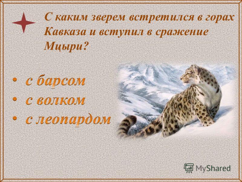 С каким зверем встретился в горах Кавказа и вступил в сражение Мцыри?