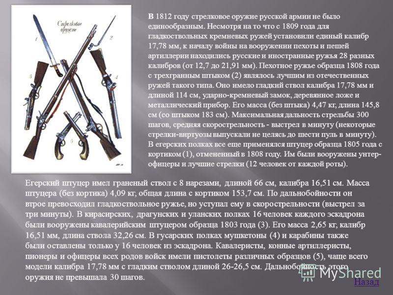 B 1812 году стрелковое оружие русской армии не было единообразным. Несмотря на то что с 1809 года для гладкоствольных кремневых ружей установили единый калибр 17,78 мм, к началу войны на вооружении пехоты и пешей артиллерии находились русские и иност