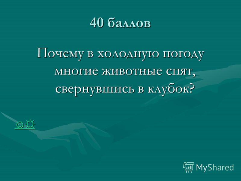 40 баллов Почему в холодную погоду многие животные спят, свернувшись в клубок?