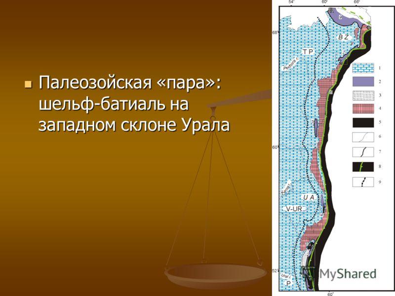 Палеозойская «пара»: шельф-батиаль на западном склоне Урала Палеозойская «пара»: шельф-батиаль на западном склоне Урала