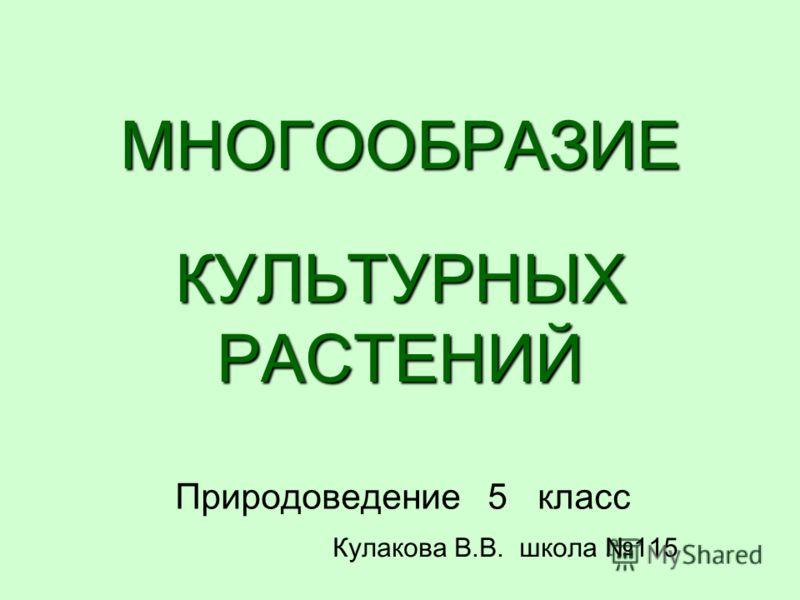 МНОГООБРАЗИЕ КУЛЬТУРНЫХ РАСТЕНИЙ Природоведение 5 класс Кулакова В.В. школа 115