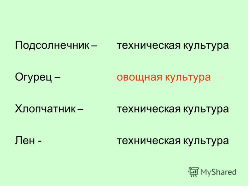 Подсолнечник – Огурец – Хлопчатник – Лен - техническая культура овощная культура техническая культура