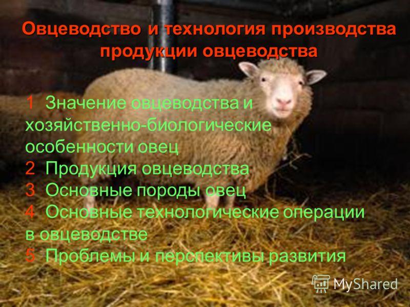 Овцеводство и технология производства продукции овцеводства 1 Значение овцеводства и хозяйственно-биологические особенности овец 2 Продукция овцеводства 3 Основные породы овец 4 Основные технологические операции в овцеводстве 5 Проблемы и перспективы