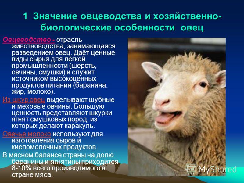 1 Значение овцеводства и хозяйственно- биологические особенности овец Овцеводство - отрасль животноводства, занимающаяся разведением овец. Даёт ценные виды сырья для лёгкой промышленности (шерсть, овчины, смушки) и служит источником высокоценных прод