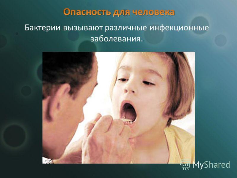 Бактерии вызывают различные инфекционные заболевания.