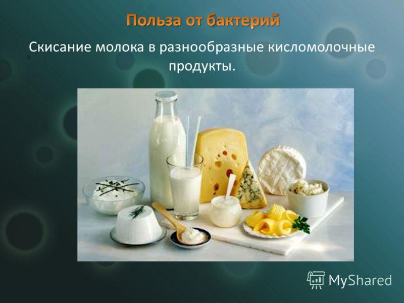 Скисание молока в разнообразные кисломолочные продукты.