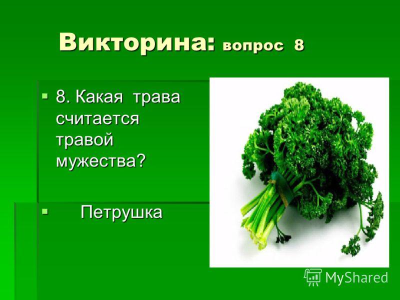 Викторина: вопрос 8 Викторина: вопрос 8 8. Какая трава считается травой мужества? 8. Какая трава считается травой мужества? Петрушка Петрушка