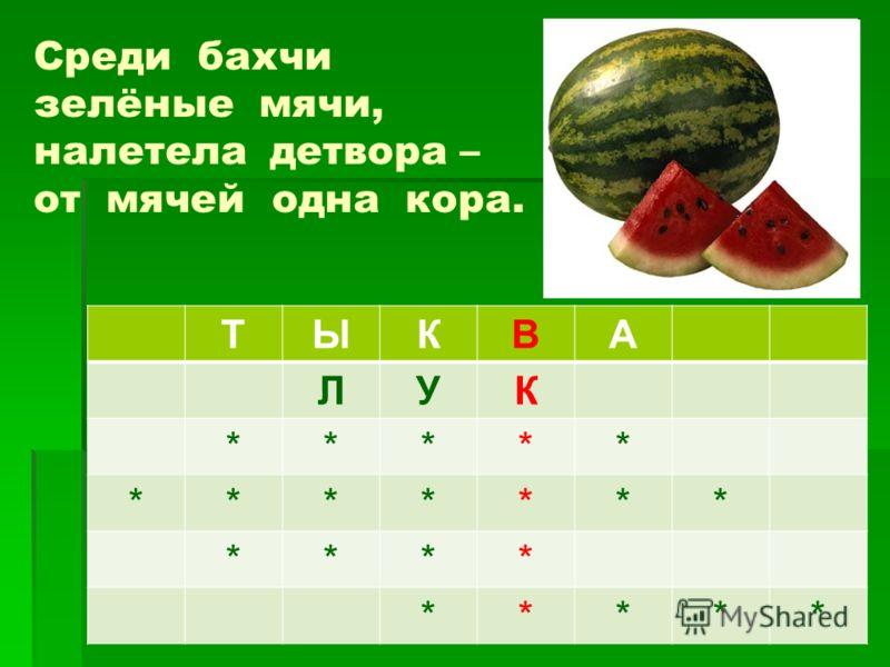 Среди бахчи зелёные мячи, налетела детвора – от мячей одна кора. ТЫКВА ЛУК ***** ******* **** *****