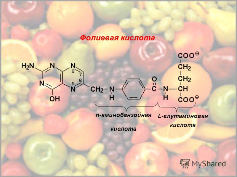 Фолиевая кислота n-аминобензойная кислота L-глутаминовая кислота