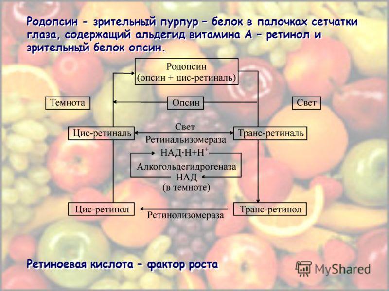 Родопсин - зрительный пурпур – белок в палочках сетчатки глаза, содержащий альдегид витамина A – ретинол и зрительный белок опсин. Ретиноевая кислота – фактор роста