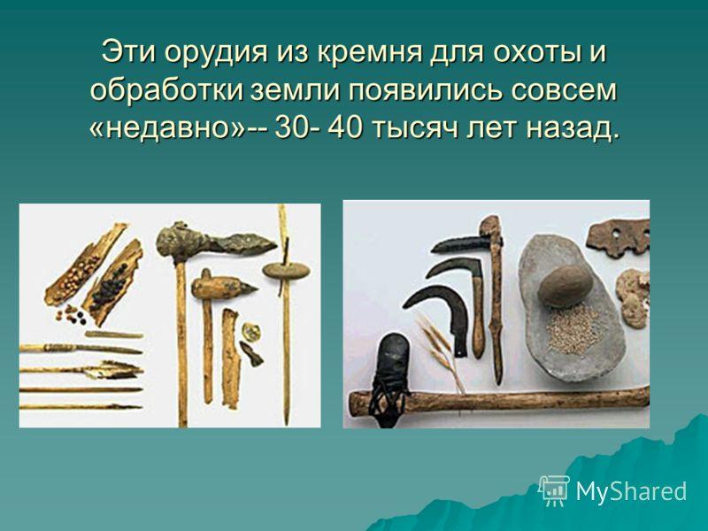 Эти орудия из кремня для охоты и обработки земли появились совсем «недавно»-- 30- 40 тысяч лет назад.