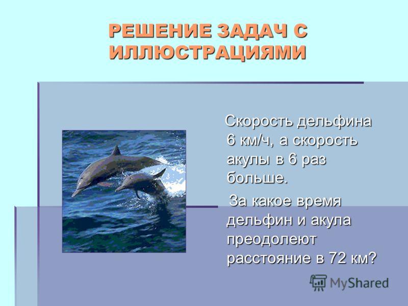 РЕШЕНИЕ ЗАДАЧ С ИЛЛЮСТРАЦИЯМИ Скорость дельфина 6 км/ч, а скорость акулы в 6 раз больше. Скорость дельфина 6 км/ч, а скорость акулы в 6 раз больше. За какое время дельфин и акула преодолеют расстояние в 72 км? За какое время дельфин и акула преодолею