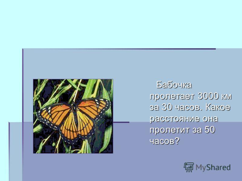 Бабочка пролетает 3000 км за 30 часов. Какое расстояние она пролетит за 50 часов? Бабочка пролетает 3000 км за 30 часов. Какое расстояние она пролетит за 50 часов?