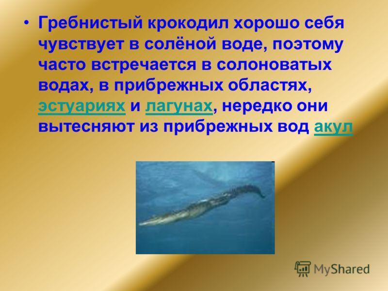 Гребнистый крокодил хорошо себя чувствует в солёной воде, поэтому часто встречается в солоноватых водах, в прибрежных областях, эстуариях и лагунах, нередко они вытесняют из прибрежных вод акул эстуарияхлагунахакул