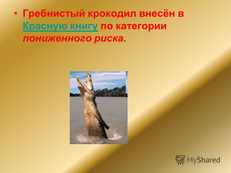 Гребнистый крокодил внесён в Красную книгу по категории пониженного риска. Красную книгу
