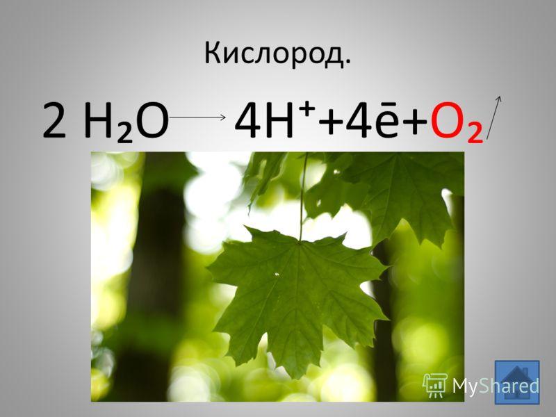 Кислород. 2 HO 4H+4ē+O