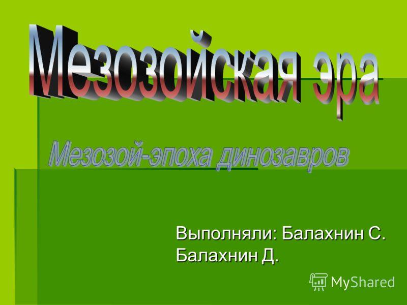 Выполняли: Балахнин С. Балахнин Д.