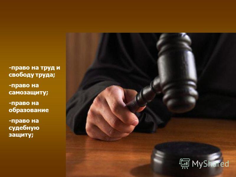 -право на труд и свободу труда; -право на самозащиту; -право на образование -право на судебную защиту;
