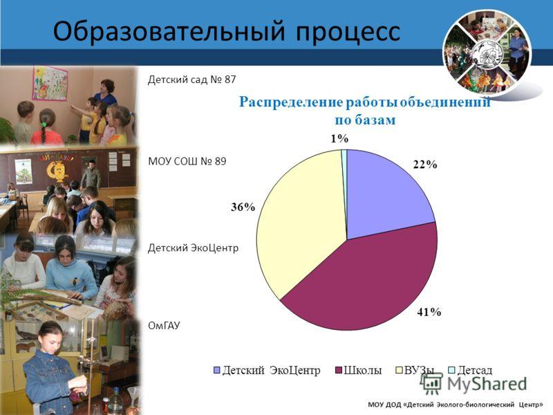 www.debcomsk.ru Образовательный процесс МОУ ДОД «Детский Эколого-биологический Центр» Детский сад 87 МОУ СОШ 89 Детский ЭкоЦентр ОмГАУ