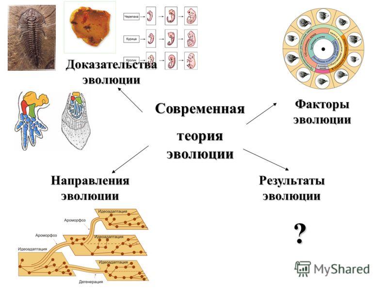 Современная теория эволюции Доказательства эволюции Направления эволюции Факторы эволюции Результаты эволюции ?